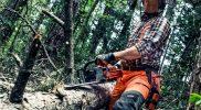Conservación y mejora de montes