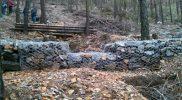 Conservación y mejora de montes 2
