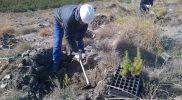 Conservación y mejora de montes 4